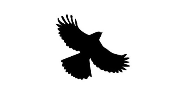 Free Flying Bird Silhouette Vector.
