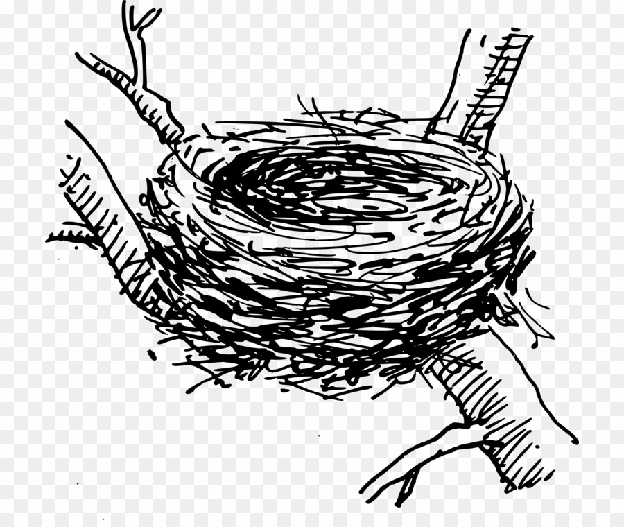 Black And White Birds Nest PNG Bird Nest Clipart download.