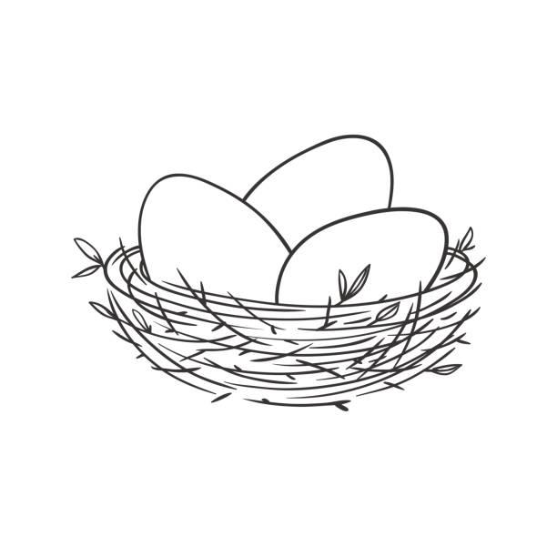 Best Bird Nest Illustrations, Royalty.