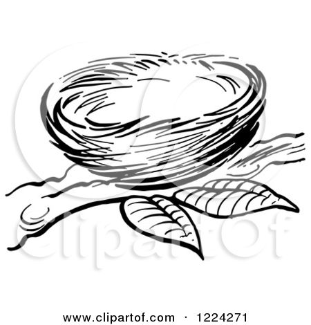 Clipart of a Black and White Bird Nest on a Branch.