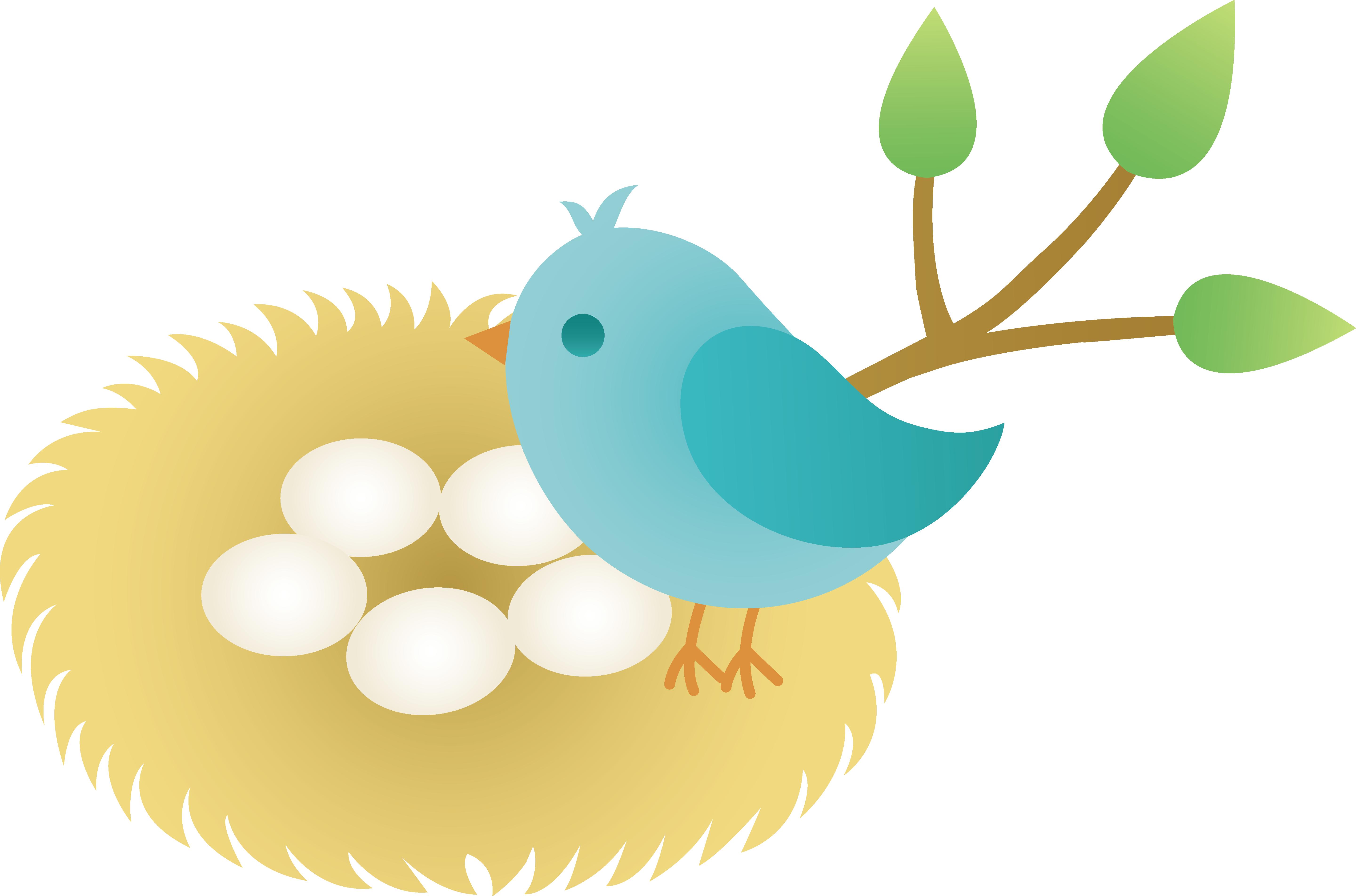 Bird in nest clip art.