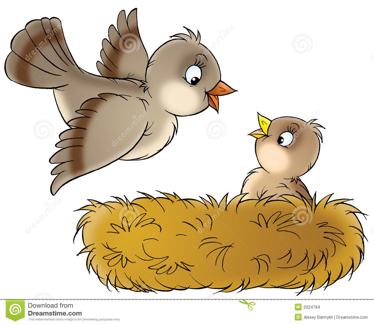 Clipart bird nest.