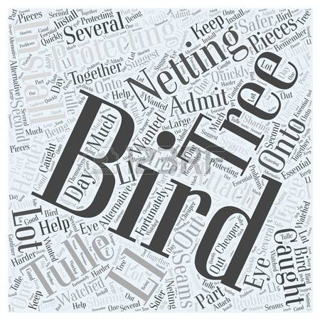 0 Bird Word Cloud Stock Illustrations, Cliparts And Royalty Free.