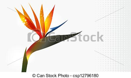 Bird of paradise Illustrations and Clip Art. 807 Bird of paradise.