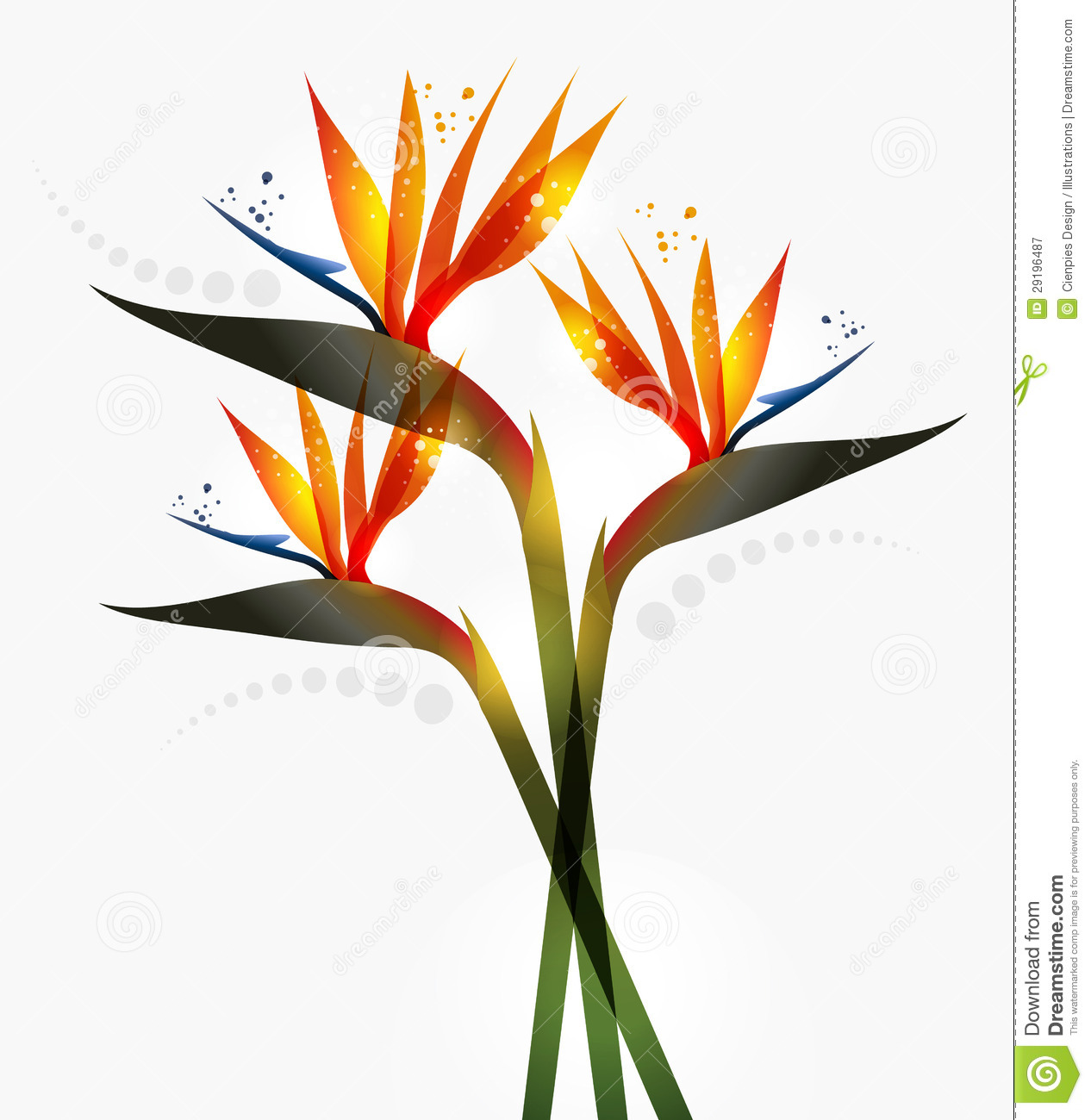 bird of paradise flower clipart clipground. Black Bedroom Furniture Sets. Home Design Ideas