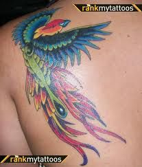 28 Best Bird Of Paradise Tattoos For Women images in 2017.