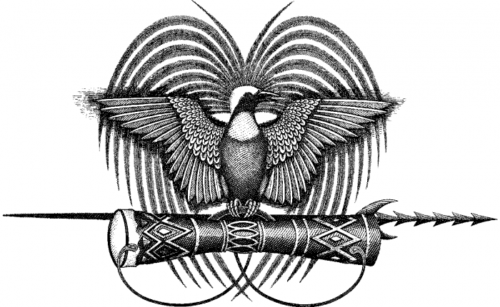 bird of paradise tattoo png 20 free Cliparts