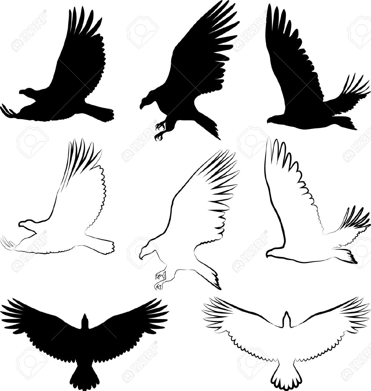 Silhouette Of Hawk And Eagle Royalty Free Cliparts, Vectors, And.