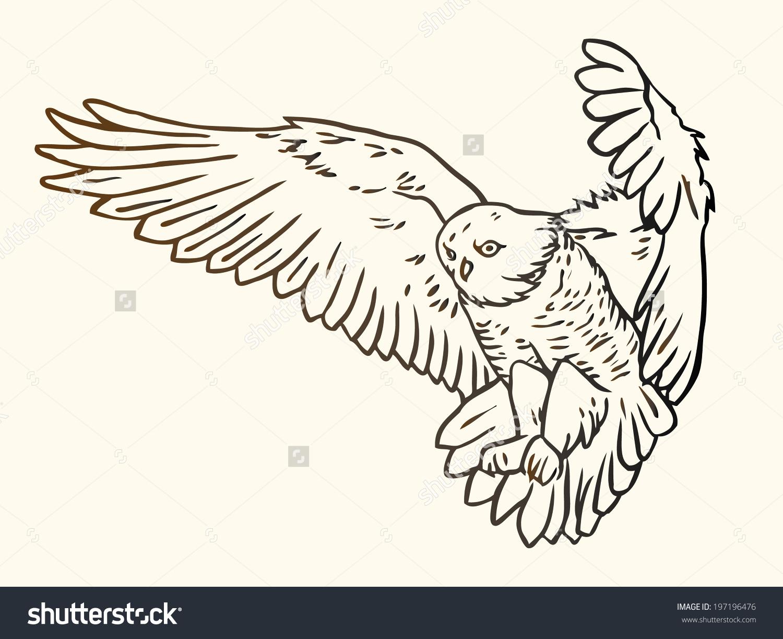Black White Contour Illustration Flying Owl Stock Vector 197196476.