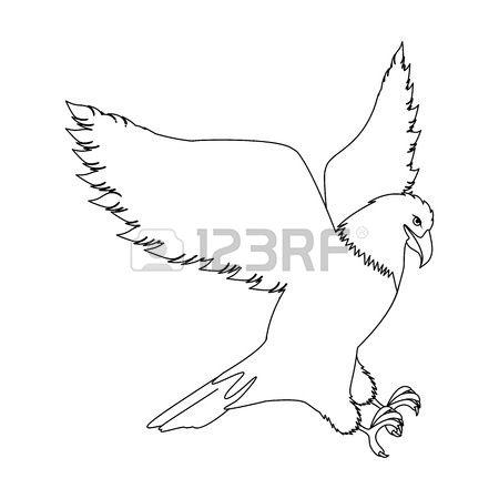 Strong Bird Of Prey Stock Photos Images. 2,637 Royalty Free Strong.