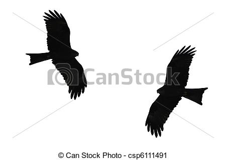 Clipart of Birds of prey silhouette. csp6111491.