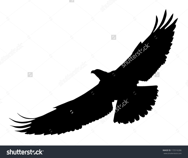 Vector Silhouette Bird Prey Osprey Flight Stock Vector 172516286.