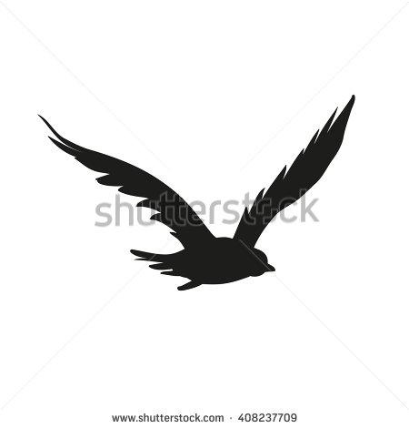 Birds Of Prey Stock Photos, Royalty.