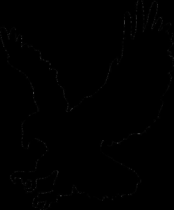 Free vector graphic: Hawk, Silhouette, Eagle.