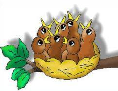 Free Bird Nest Clipart.