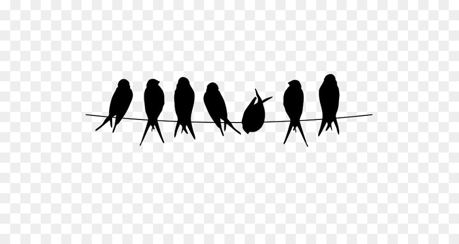 Bird Silhouette png download.
