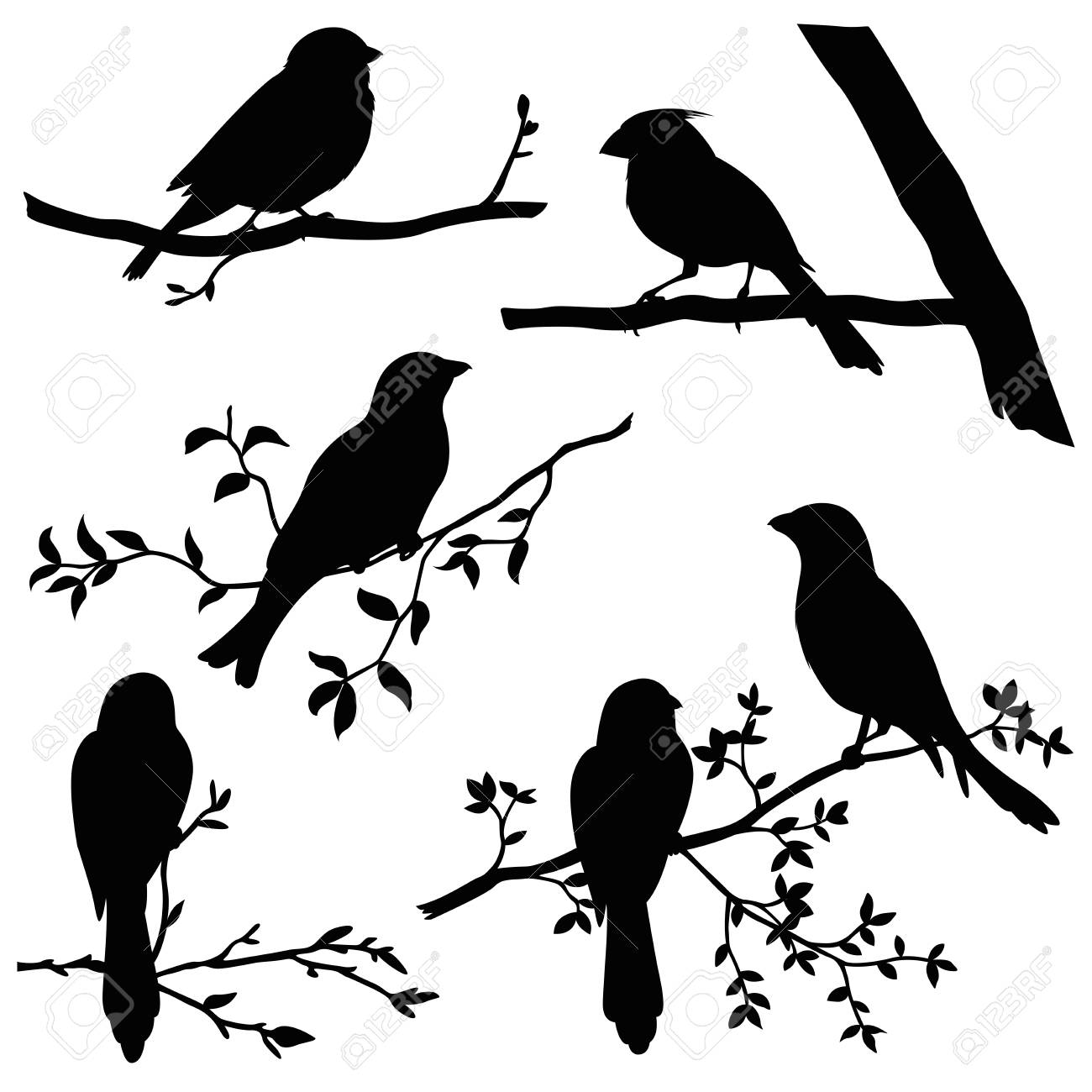 birds on branches silhouette set.