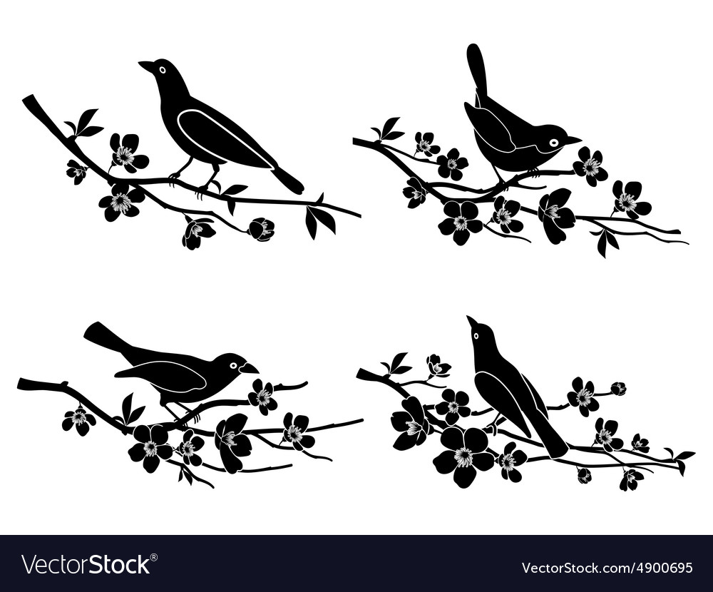Birds on branches silhouettes.