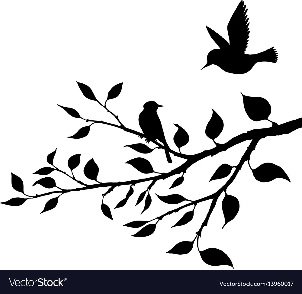Birds at tree silhouettes.