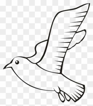 Free PNG Bird Outline Clip Art Download.