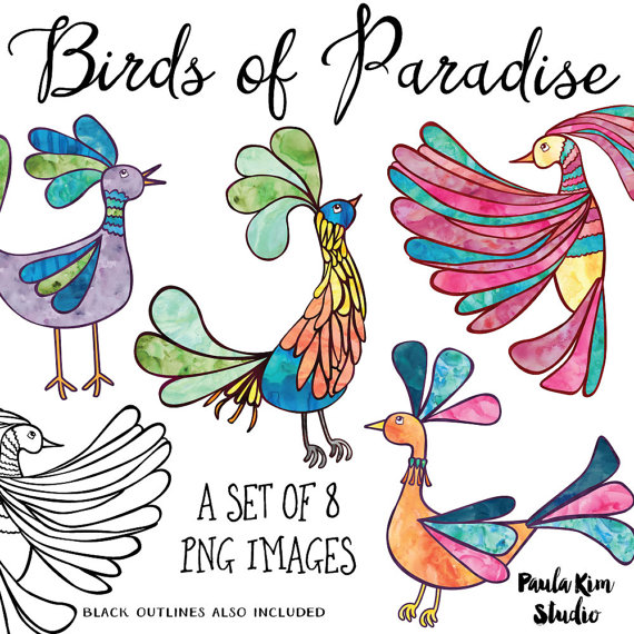 Birds of Paradise Clip Art, Rainbow Watercolor Clipart, Rainbow.