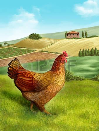 684 Bird Feeding Stock Vector Illustration And Royalty Free Bird.