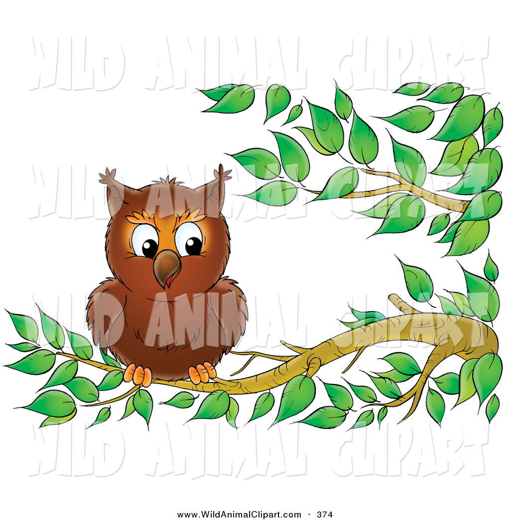 The best free Perched clipart images. Download from 30 free.