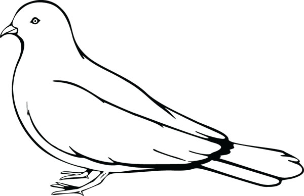 Pigeon Bird Clip Art Graphic For Engraved Products.