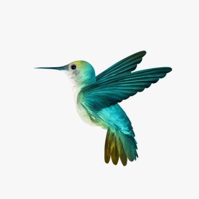 Hummingbird, Hummingbird Clipart, Birds PNG Transparent Image and.