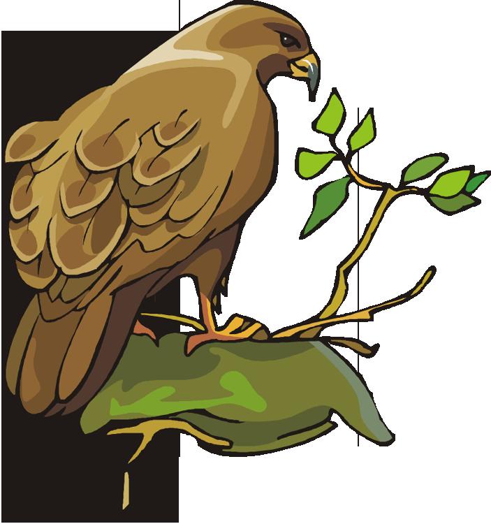 Bird prey clipart - Clipground Prey Clipart
