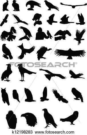 Clipart of Birds of prey k12198283.