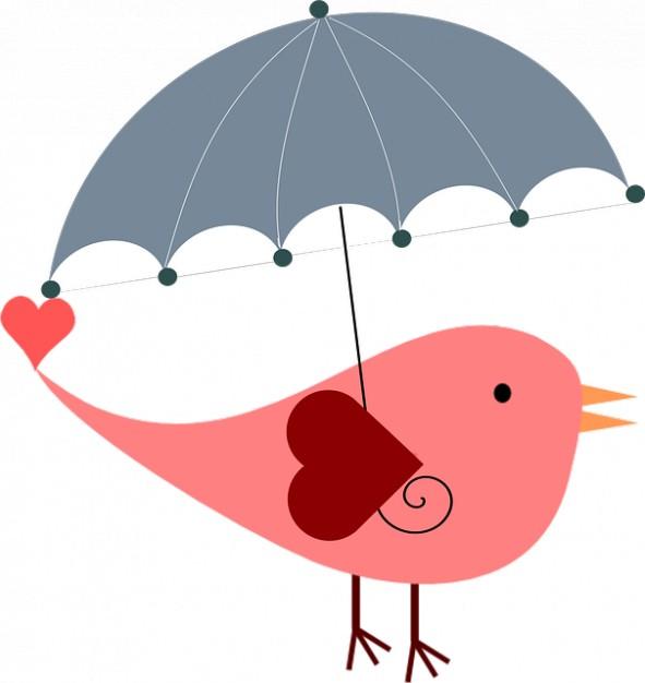 Bird umbrella protection summer spring easter Photo.
