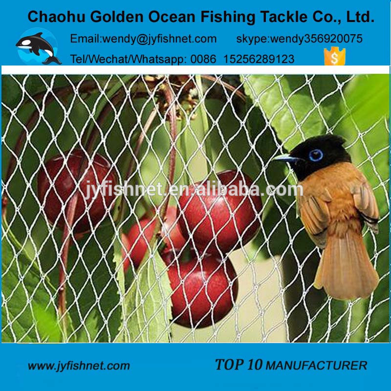 Harvest Birds, Harvest Birds Suppliers and Manufacturers at.