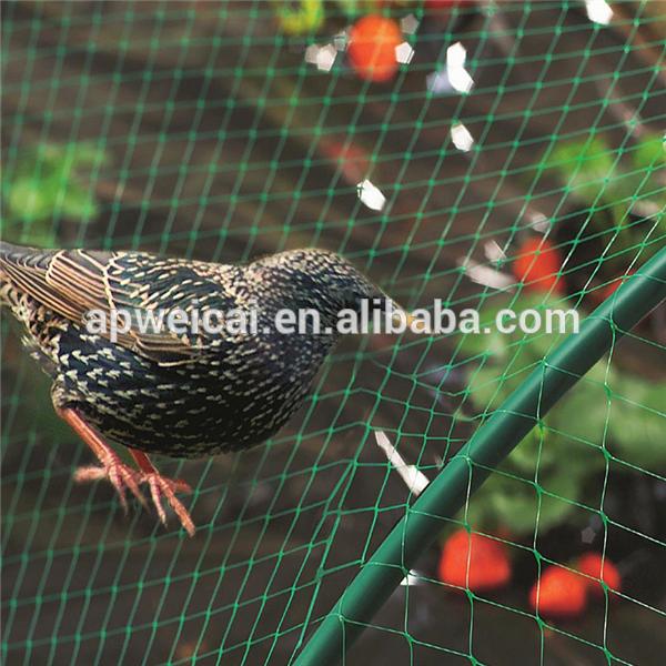 Nylon Anti Bird Net Fruit Protection Net Factory.