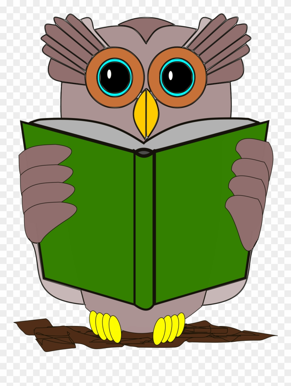 Owl Book Review Reading Bird.