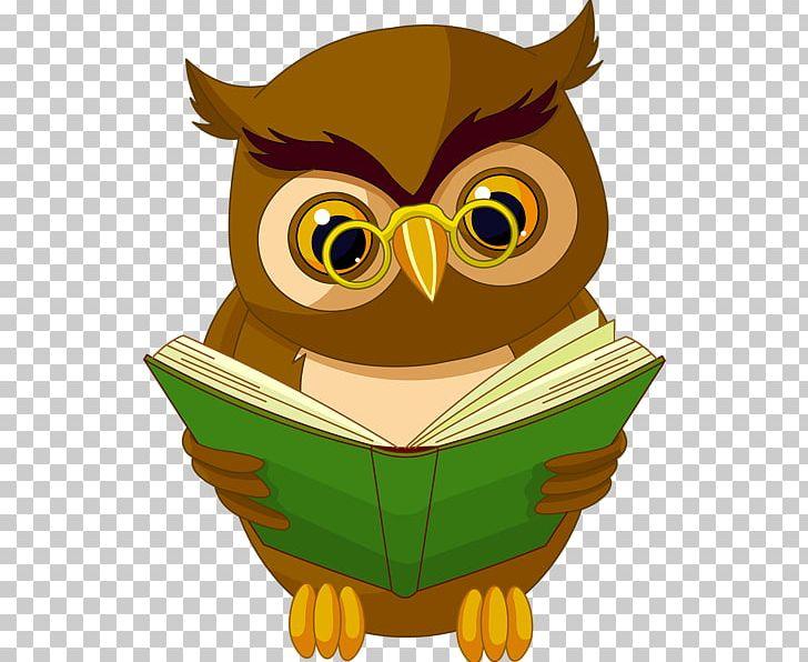 Owl Book Reading PNG, Clipart, Animals, Beak, Bird, Bird Of.