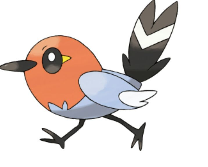 Whats your favorite route 1 bird pokemon.