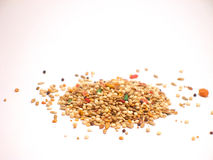 Bird Seed Mix Royalty Free Stock Images.