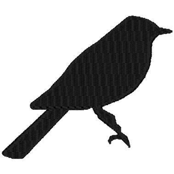 Bird Shadow.
