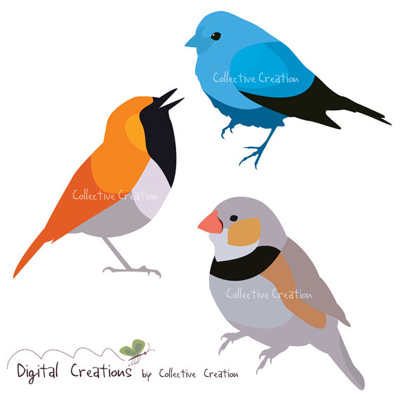 Simple Bird Shapes Digital Clip Art Set Personal And Commercial.