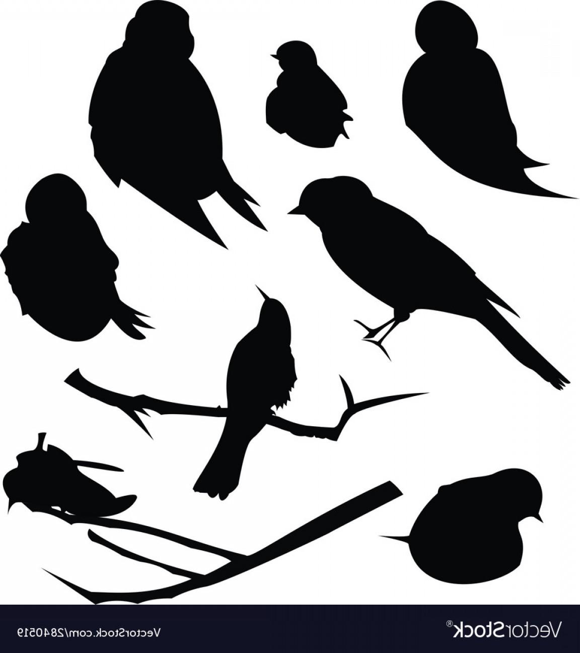 Bird Silhouette Animal Clip Art Vector.