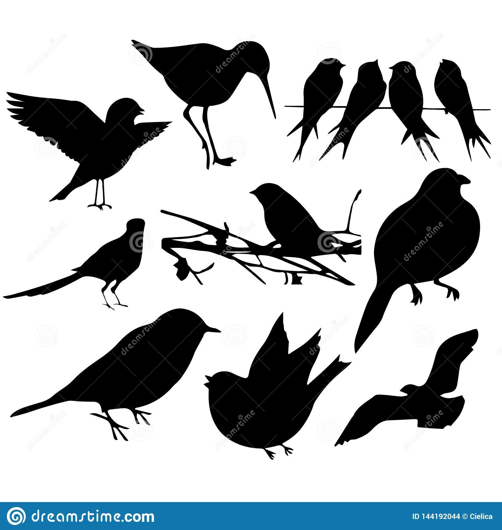 Birds Silhouettes Cutting Files Plotters Silhouette Cameo Cricut.