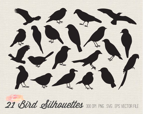 BUY 2 GET 1 FREE 21 Bird Silhouettes Clipart.