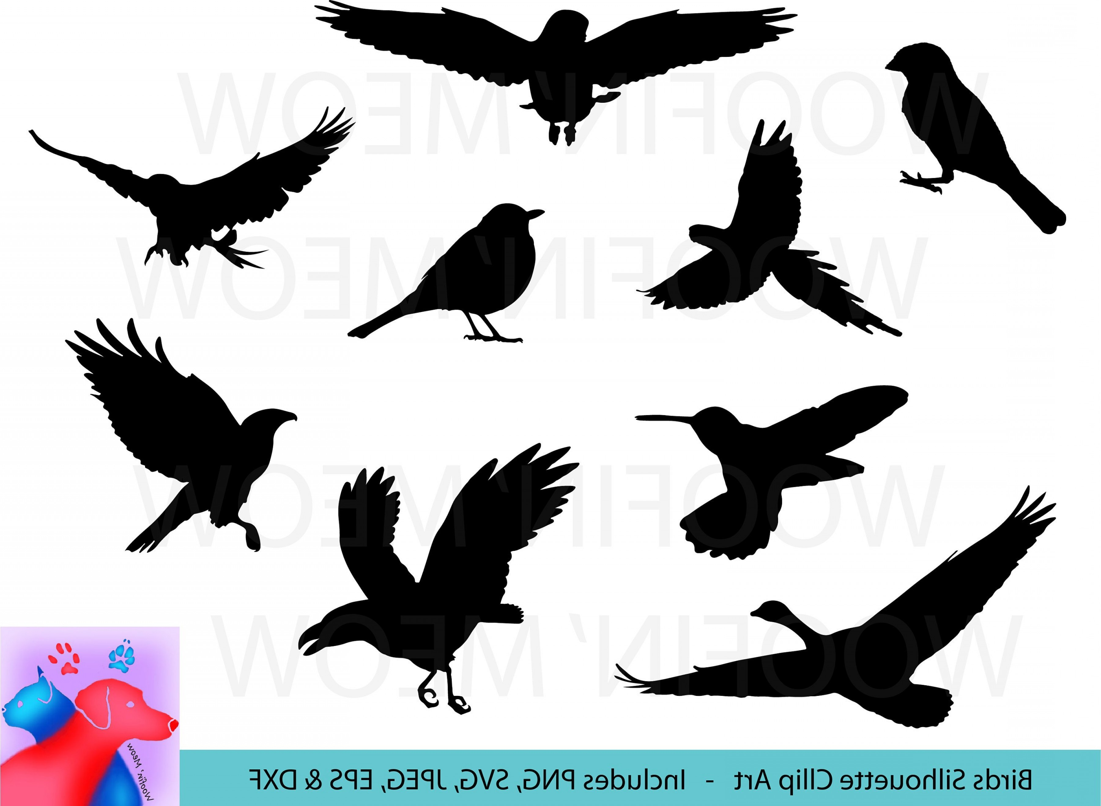 Bird Svg Silhouette Clipart Bird Vector.