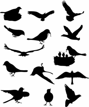 Bird free vector download (3,126 Free vector) for commercial.