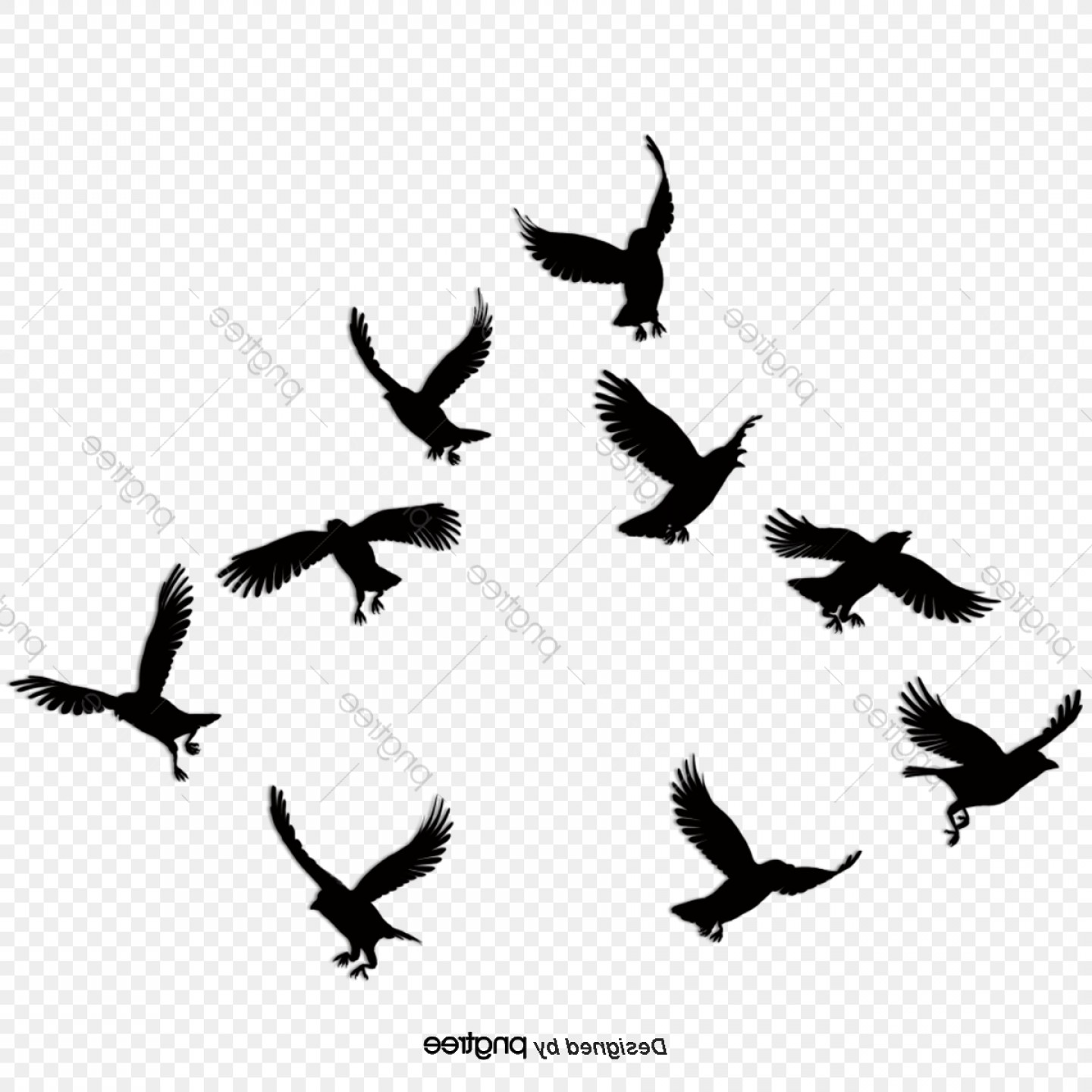 Black Vector Birds Simple Birds Black Birds Silhouette.