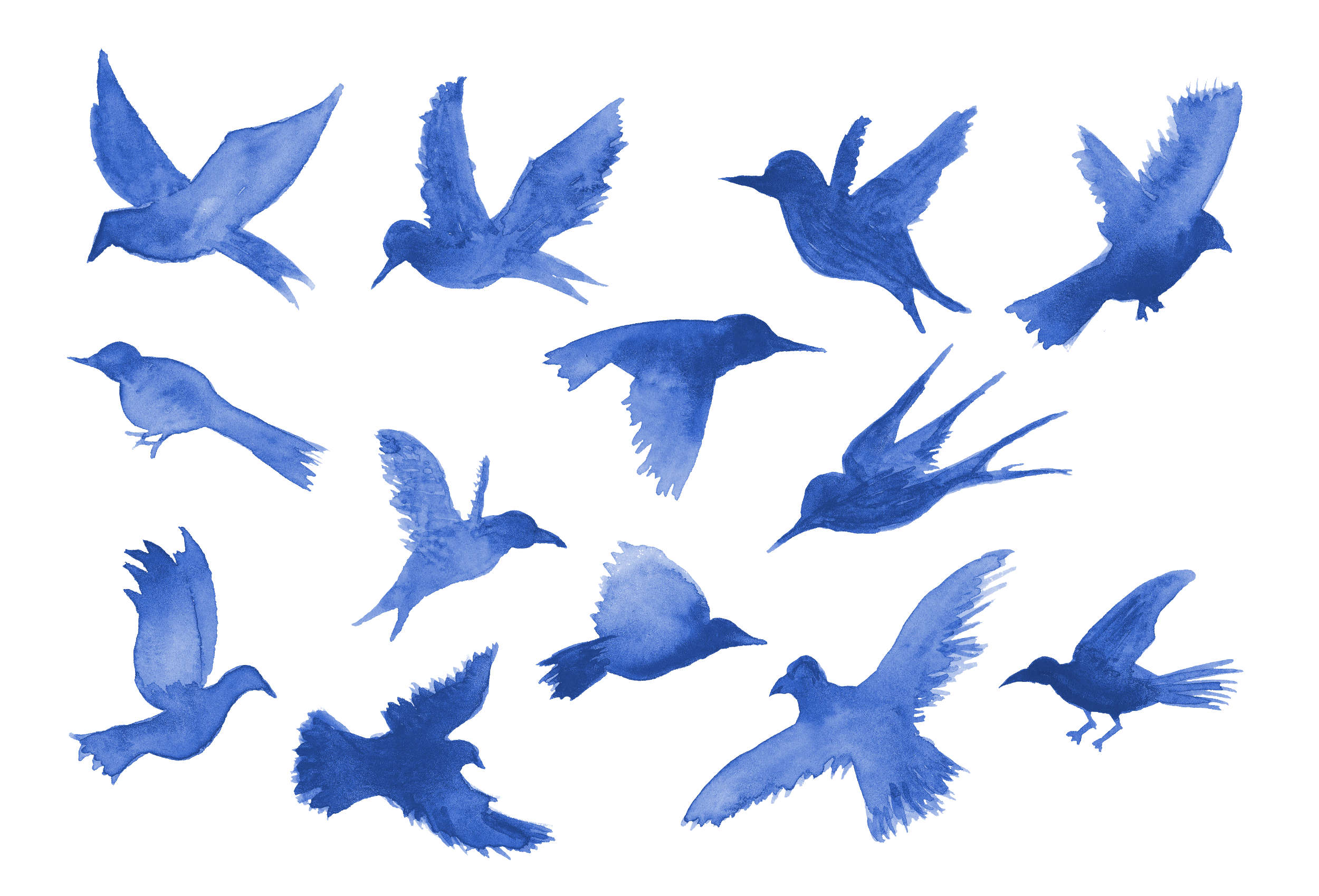 13 Watercolor Bird Silhouette (PNG Transparent).