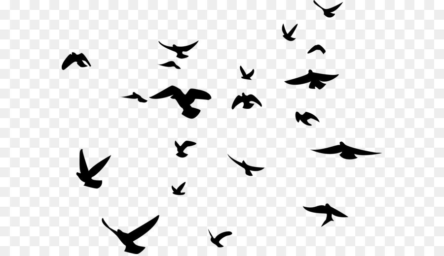 Bird Png Silhouette & Free Bird Silhouette.png Transparent Images.