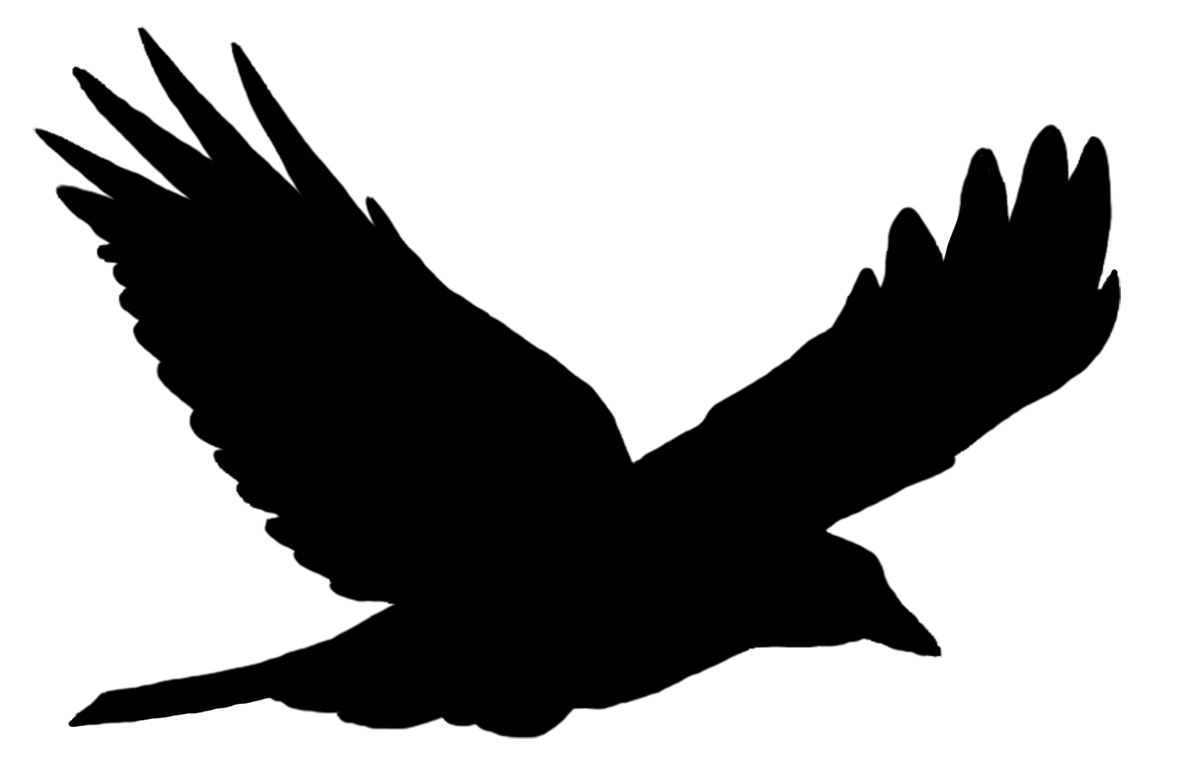 Bird Silhouette Solo Flying transparent PNG.