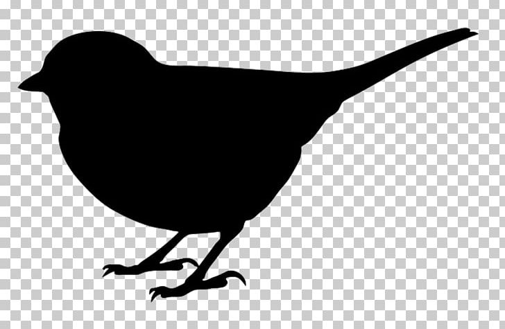 Bird Silhouette PNG, Clipart, Animals, Art, Beak, Bird, Black And.